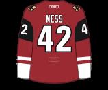 Aaron Ness's Jersey