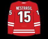 Andrej Nestrasil's Jersey