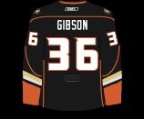 John Gibson's Jersey