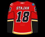 Matt Stajan's Jersey