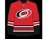 Ryan Suzuki's Jersey