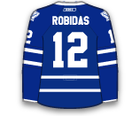 Stephane Robidas's Jersey
