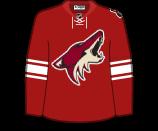 Pavel Datsyuk's Jersey
