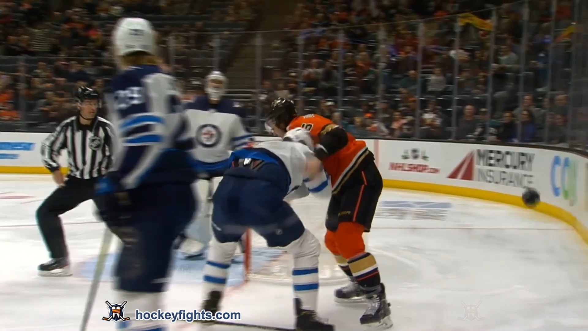 Erik Gudbranson vs. Anthony Bitetto